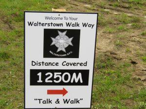 walt walk 2