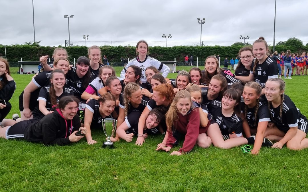 Walterstown ladies win Division 8 title
